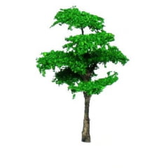 Arvore Verde - SAM 17